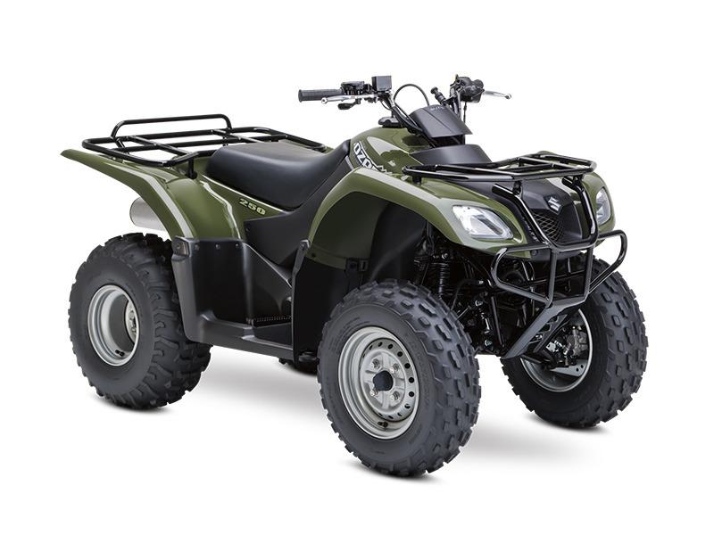 Ozark-250-Suzuki-ATV